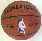 Spalding NBA Game Ball Series (Indoor-Outdoor)